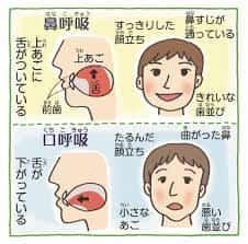 鼻呼吸と口呼吸の違い