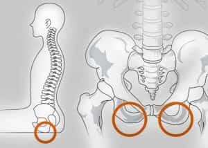 骨盤を立てて背骨はS字カーブを保つ